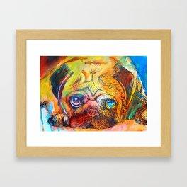 Pop Art Pug Framed Art Print