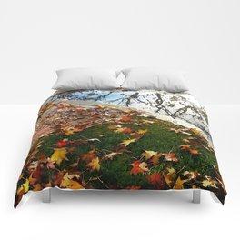 California Winter Comforters