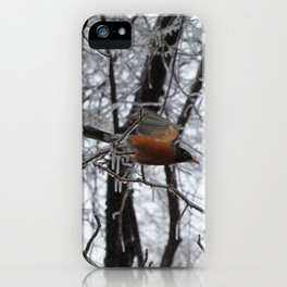 Robin After Icestorm iPhone Case