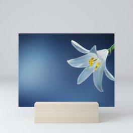 Flower Lily Lilium Candidum Mini Art Print