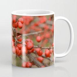 Red berries Coffee Mug