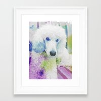 poodle Framed Art Prints featuring poodle by Sarah Jane Connors