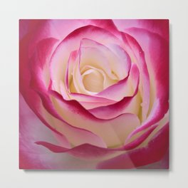 Flower - II Metal Print