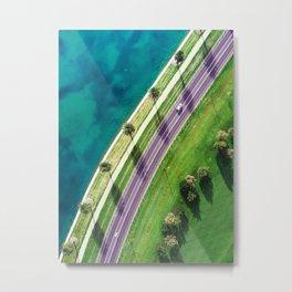 Avenue of Palm Trees Metal Print