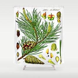 Pinus sylvestris Shower Curtain