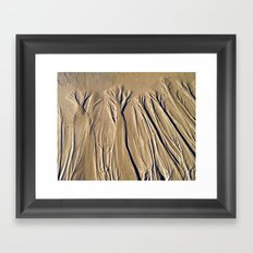 The Forest In The Sand Framed Art Print