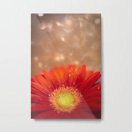 Sparkle in the sky - Daisy Bright / Gerbera Experimental Metal Print
