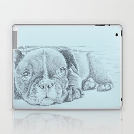 Sweet puppy blue Laptop & iPad Skin