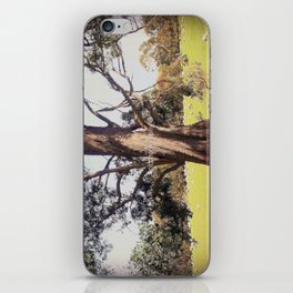 Under the shade of a coolabah Tree iPhone Skin