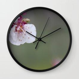 Flower PW 01 Wall Clock