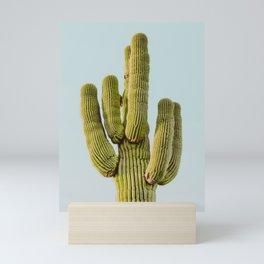 desert cactus xxxii / scottsdale, arizona Mini Art Print