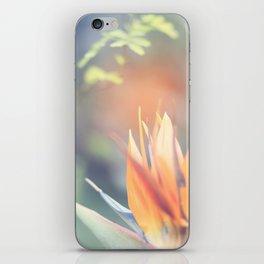 Paradise 3 iPhone Skin