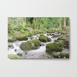 Windermere Creek Metal Print