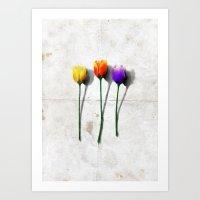 tulip Art Prints featuring Tulip by Det Tidkun