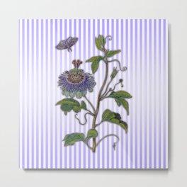 Merian: Passiflora Metal Print