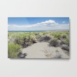 Green Grass Clearing (Mono Lake, California) Metal Print