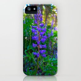Montana Lupines in the Meadow iPhone Case