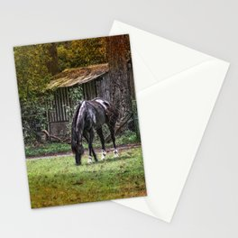 Horses Grazing Stationery Cards
