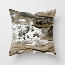 Sandpipers feeding in a tide pool Throw Pillow