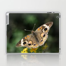 Common Buckeye Laptop & iPad Skin