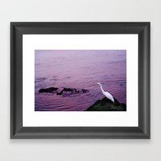 White Egret at Sunset Framed Art Print