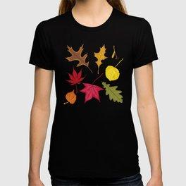 Autumn. Leaves. T-shirt