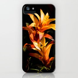Golden Afternoon iPhone Case