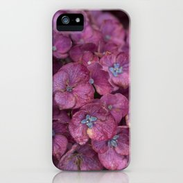 Hydrangea (Fall) iPhone Case