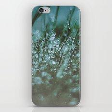 Dewy iPhone & iPod Skin