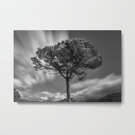 Windy Tree. At the mountains Metal Print
