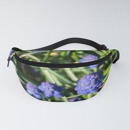 Grape Hyacinth Fanny Pack