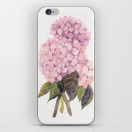 watercolor pink hydrangea iPhone Skin