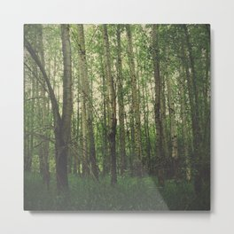 Green Space Metal Print