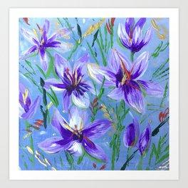 Saffron Crocus Blooms Art Print