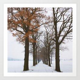 oaks avenue Art Print