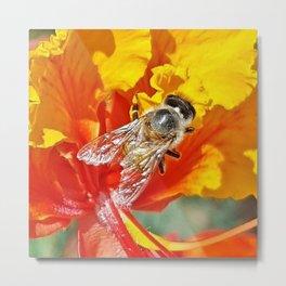 abeille (Deux)  Metal Print