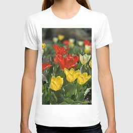 Lewes Tulips Festival T-shirt