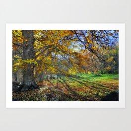 multicolored autumn Art Print