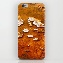 Orange Texture iPhone Skin