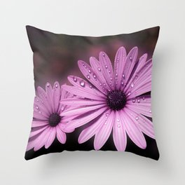 DEW DROPS ON DAISIES Throw Pillow