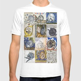 Medieval Cats Licking Their Butts T-shirt