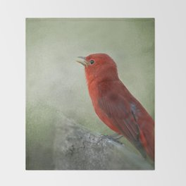 Song of the Summer Tanager 3 - Birds Throw Blanket