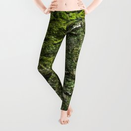 Green wall Leggings