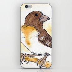 Yellow Rose-breasted Grosbeak iPhone & iPod Skin