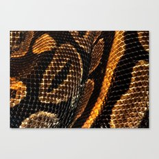 SNAKING Canvas Print