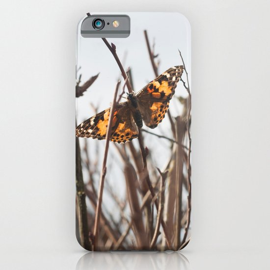 painted lady iPhone & iPod Case