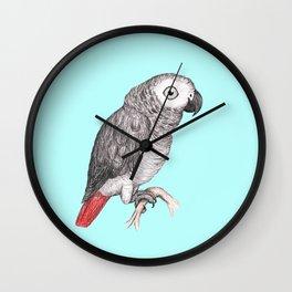 Cute African grey parrot Wall Clock