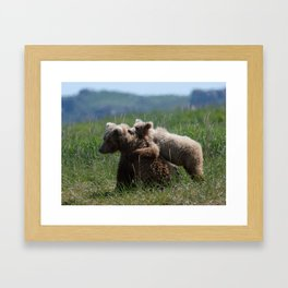 Alaska Grizzly Mother And A Cub In Katmai National Park #Society6 Framed Art Print