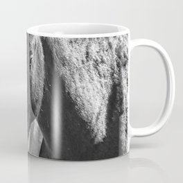 Bachelor Stallions - Pryor Mustangs - BW Coffee Mug