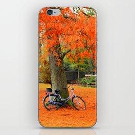 Amsterdam in the Fall iPhone Skin